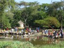 Fish Market by Lake Awassa| Birding tour Ethiopia 2014