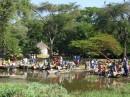 Fish Market by Lake Awassa| Birding tour Ethiopia 2014