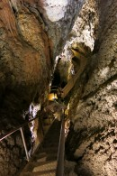 Looking for bats in the dripstone cave| Small mammal holiday Hungary